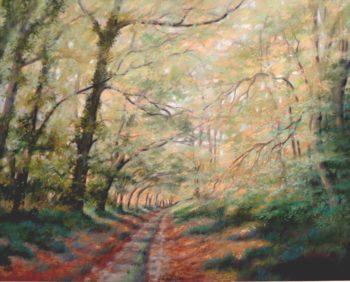 Chemin en automne - 50x40