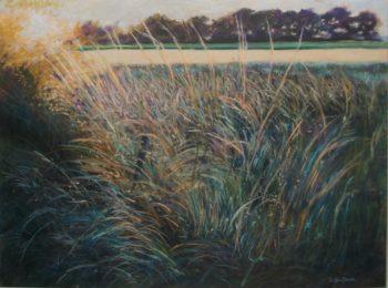 Crépuscule sur les herbes - 40x30