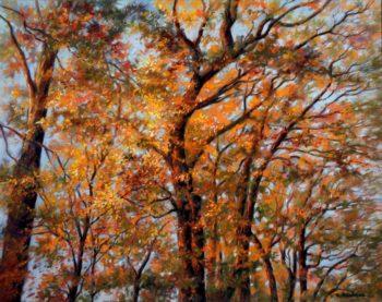L'automne dans les arbres - 50x40